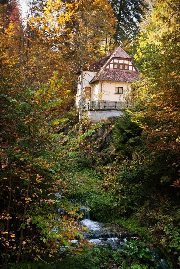 Cottage nel legno vicino ad un'insenatura fotografia stock