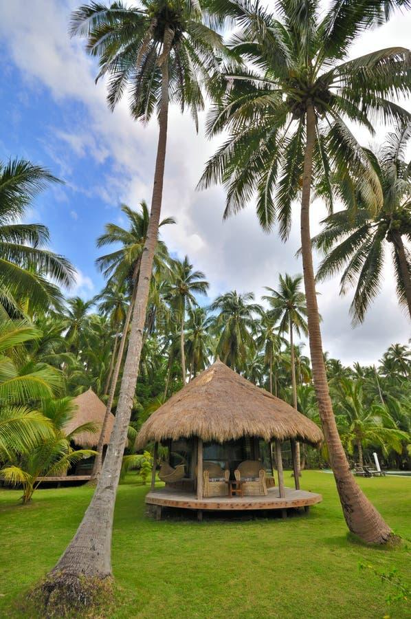 Cottage in palme di noce di cocco fotografia stock