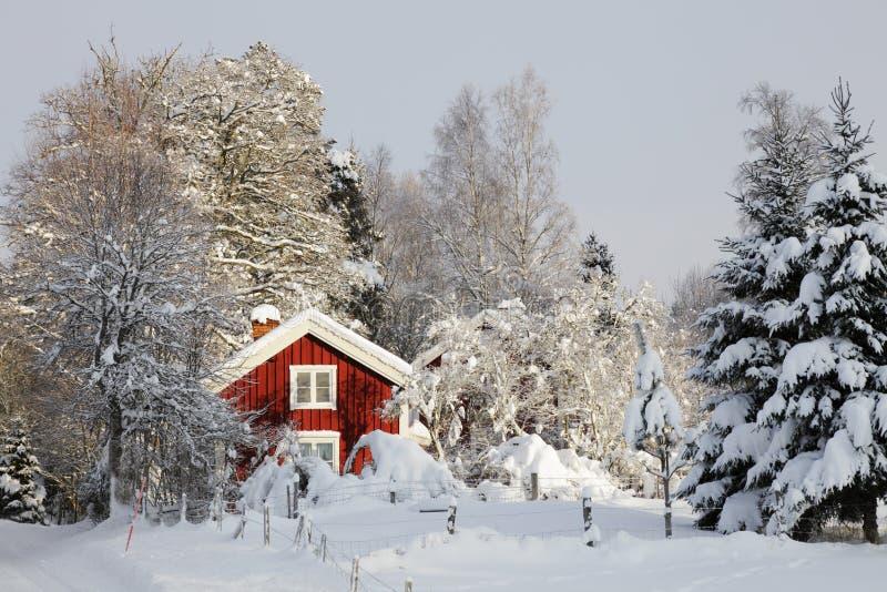 Cottage rosso e paesaggio di inverno immagine stock
