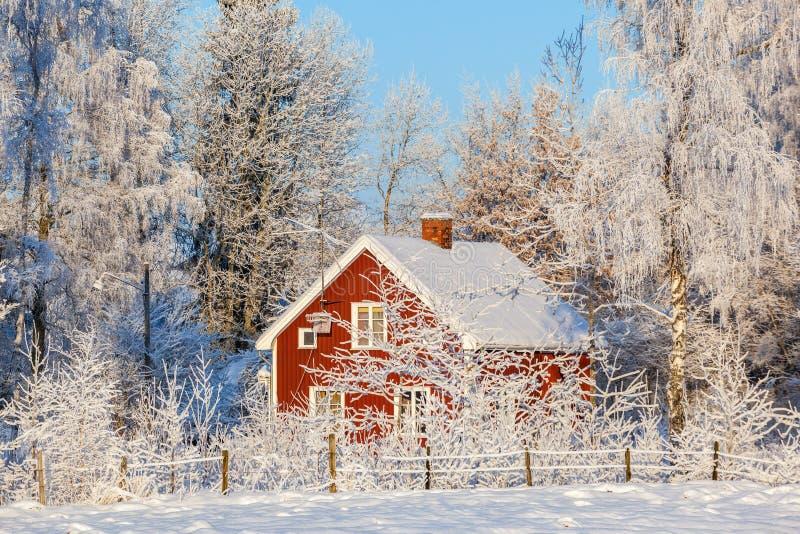 Cottage rosso nella foresta di inverno immagini stock libere da diritti