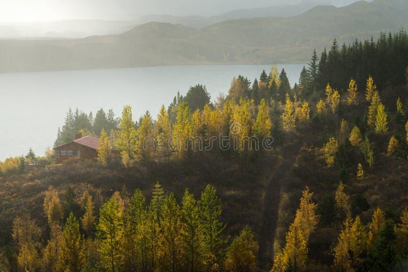 Cottage solo che circonda dall'albero giallo nella stagione di autunno con il fondo della catena montuosa e del mare fotografia stock