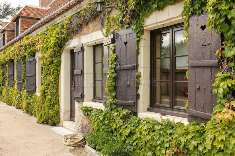 Cottage windows surrounded by ivy. Chenonceau. France stock photo
