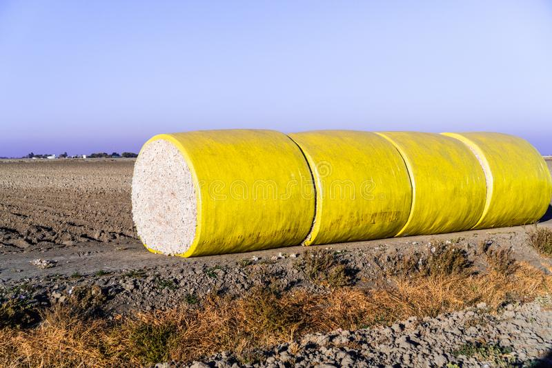 Cotton bales arranged in a row next to a harvested field, ready for pick up; Central California, United States stock photography