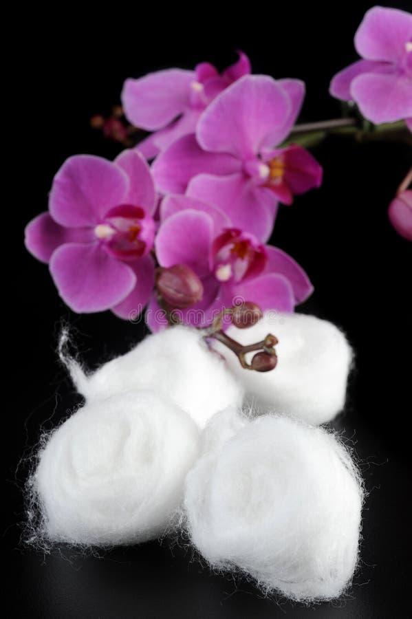 Cotton balls stock image