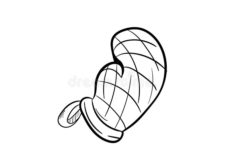 Cotton checkered usability tacking cookware cake icon vector. Hand draw drawing royalty free illustration