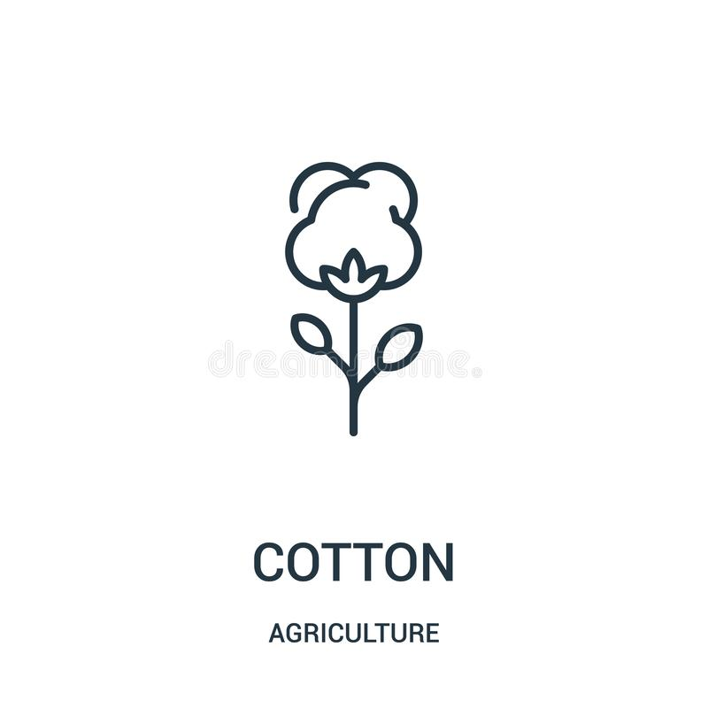Cotton icon vector from agriculture collection. Thin line cotton outline icon vector illustration. Linear symbol for use on web. And mobile apps, logo, print vector illustration