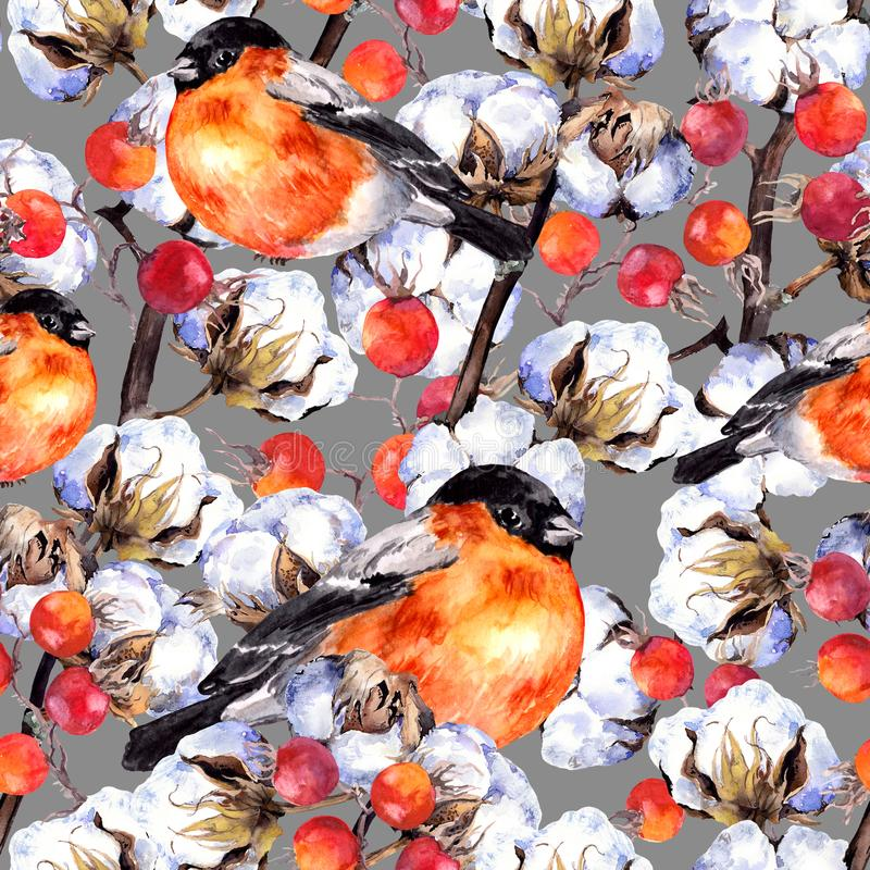 Cotton plant branches, red berries, winter finch birds. Repeating pattern. Watercolor. Background stock illustration