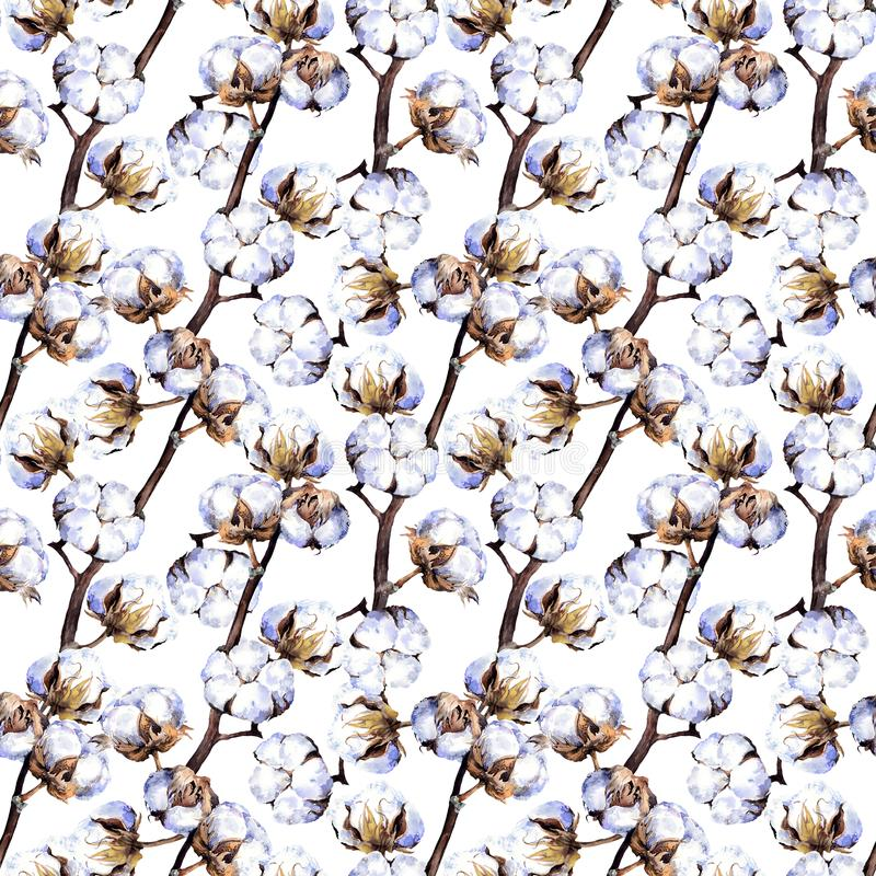 Cotton plant branches. Repeating pattern. Watercolor. Background royalty free stock photography