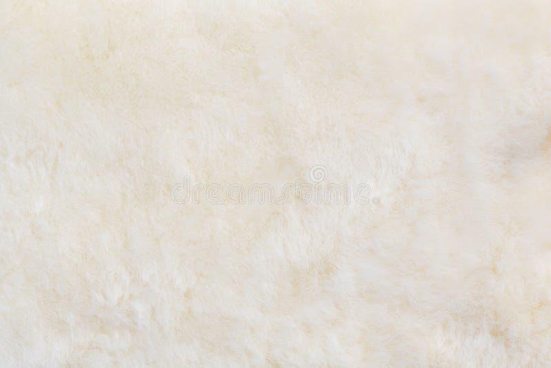 Cottonwool tekstura obrazy royalty free