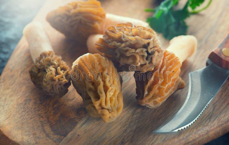 Cottura dei funghi della spugnola Fungo delizioso commestibile, spugnole precoci della molla su una tavola Morchella Bohemica di  fotografia stock