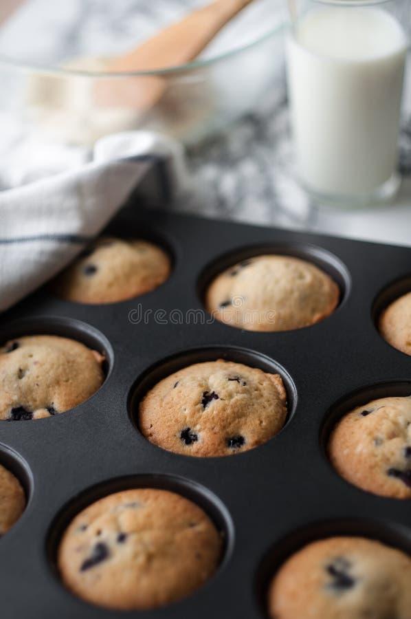 Cottura dei muffin con i mirtilli fotografia stock