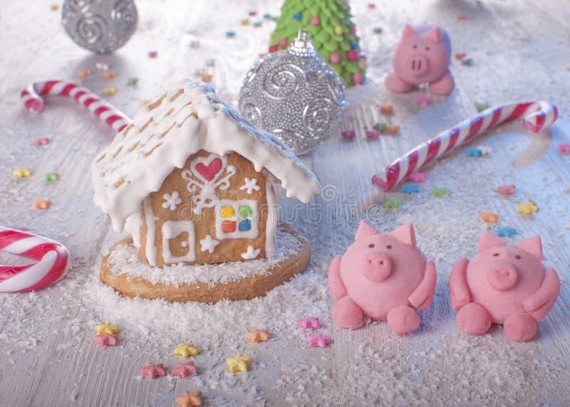 Cottura per vacanze Anno del maiale fotografie stock libere da diritti