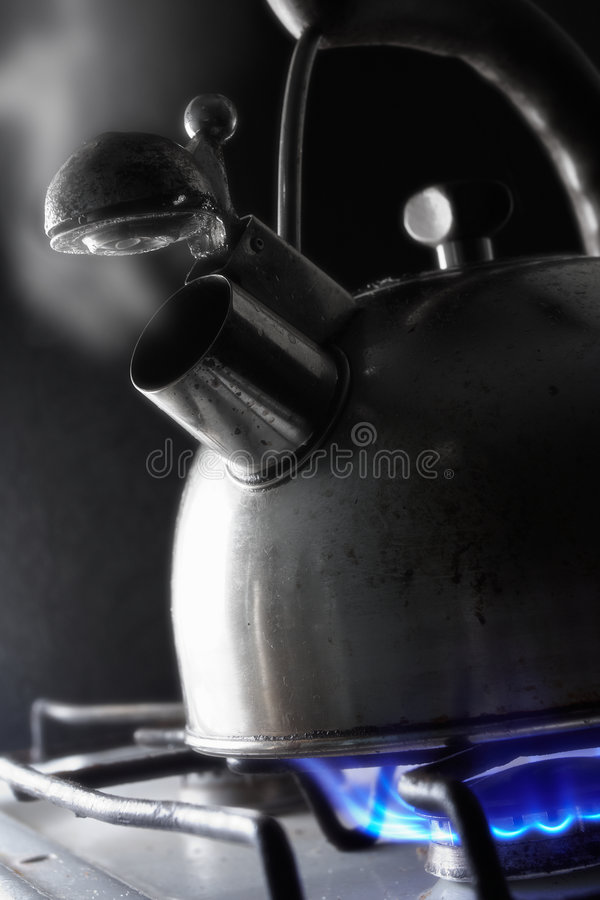 Download Cottura A Vapore Della Caldaia Immagine Stock - Immagine di caldo, fornello: 7303747
