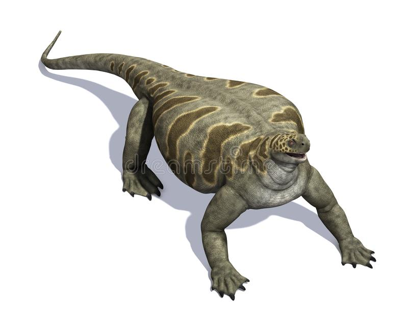 Cotylorhynchus Dinosaur. The Cotylorhynchus was a dinosaur that lived during the Permian Period - 3d render royalty free illustration