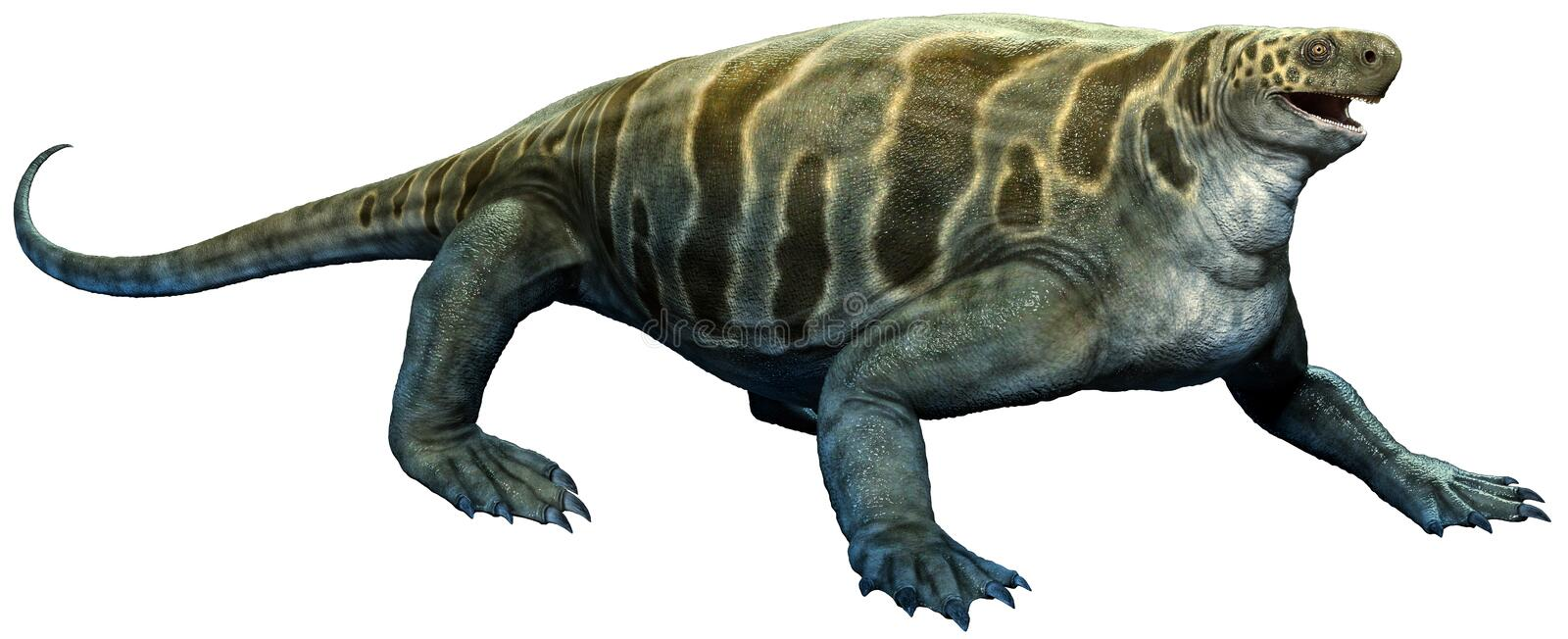 Cotylorhynchus from the Permian era 3D illustration royalty free illustration