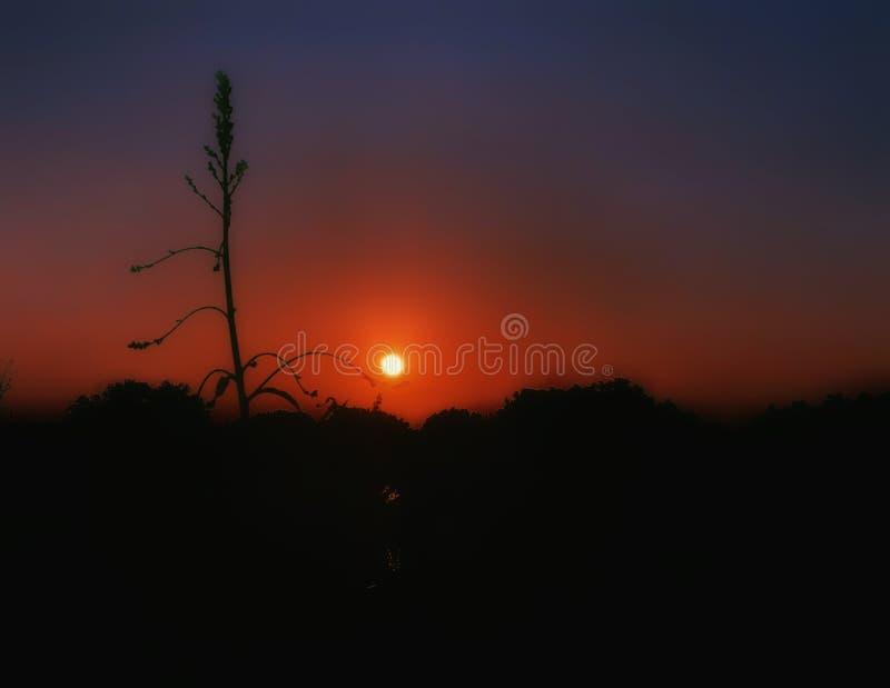 coucher de soleil à mi-automne photo stock