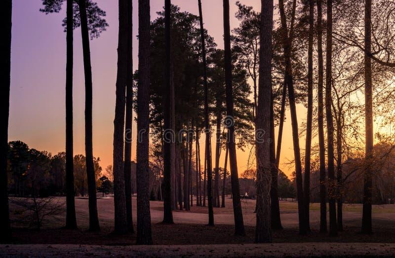 Coucher de soleil dans le parc lors d'un après-midi d'automne coloré images stock