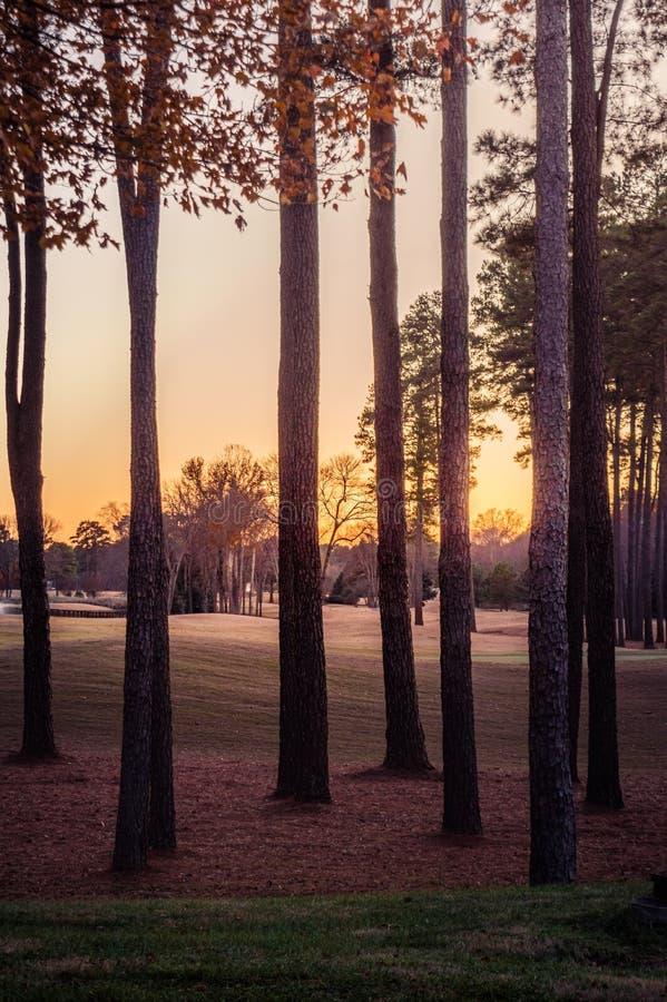 Coucher de soleil dans le parc par une journée d'automne colorée photos libres de droits