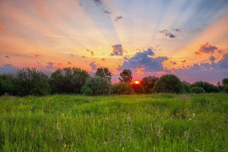 Coucher de soleil en plein été images stock