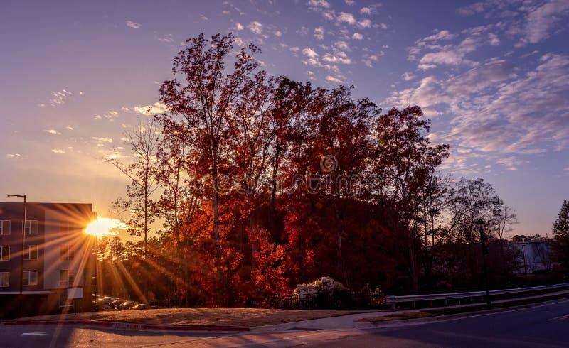 Coucher de soleil par un condo pendant la saison d'automne photographie stock libre de droits