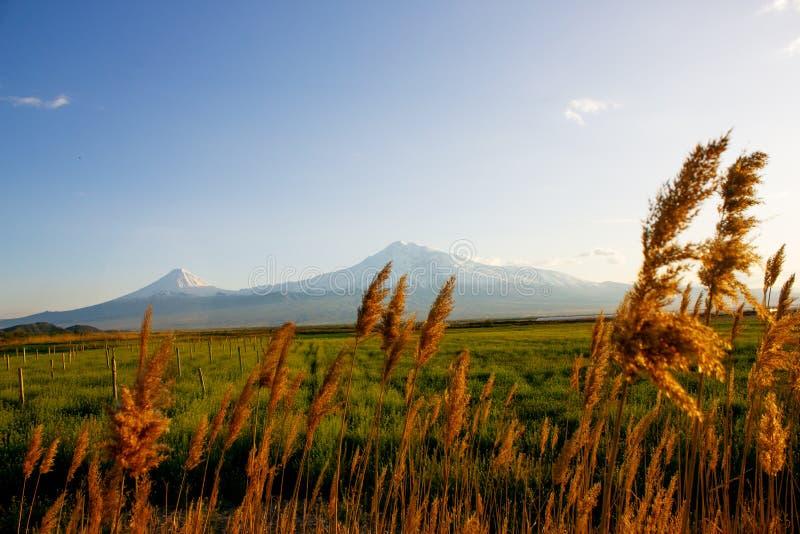 Coucher de soleil sur le Mont Ararat depuis — Arménie fotos de stock royalty free