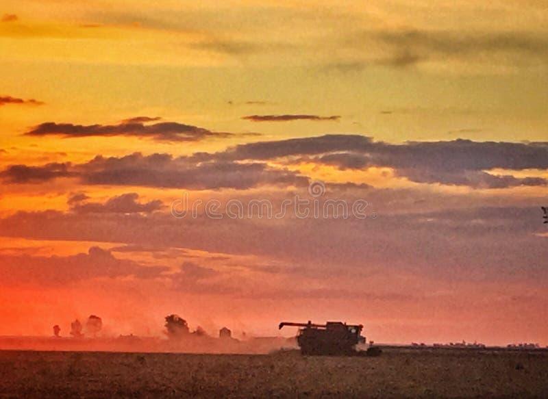 Coucher du soleil à l'Australie de Jimbour image libre de droits