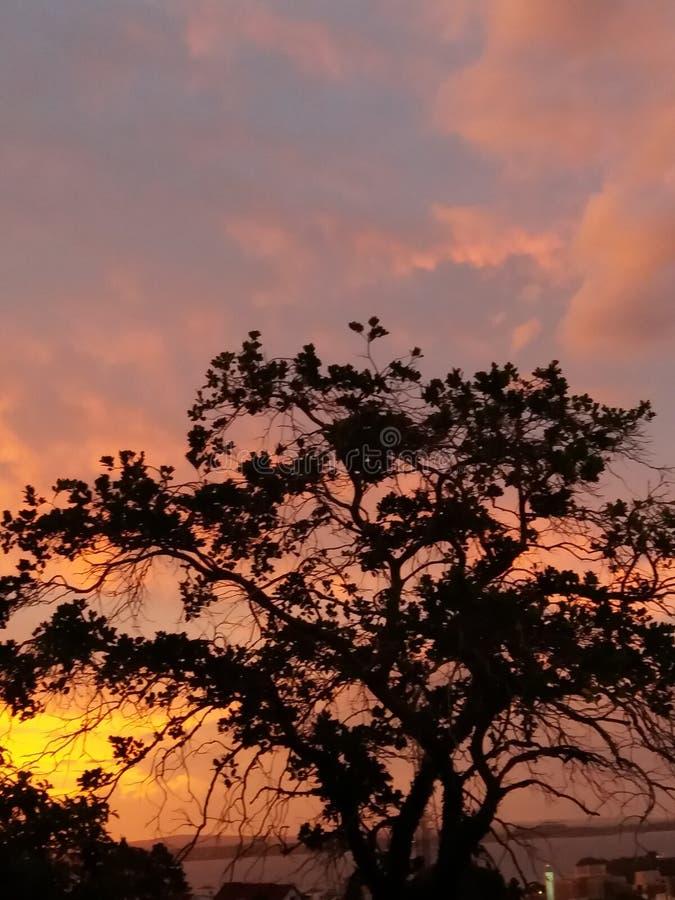 Coucher du soleil à Porto Alegre, Brésil images libres de droits