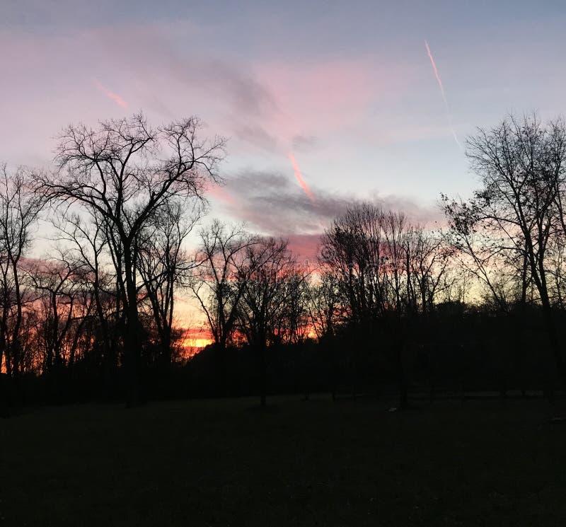 Coucher du soleil étonnant au-dessus de la rivière derrière les arbres images libres de droits