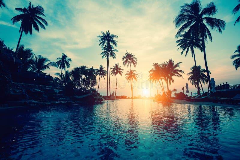 Coucher du soleil étonnant sur la mer de côte de paume dans les régions subtropicales Voyage photo libre de droits