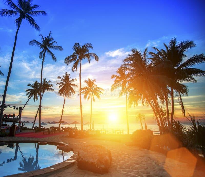 Coucher du soleil étonnant sur la plage tropicale d'océan Concept de vacances et de loisirs photos stock