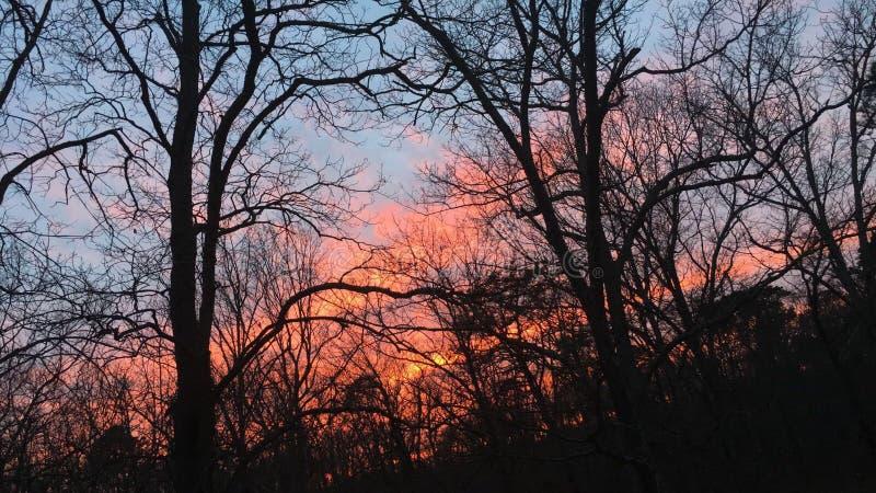 Coucher du soleil 06 photo libre de droits