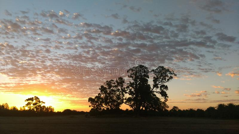 Download Coucher du soleil image stock. Image du fleuve, murray - 87700941