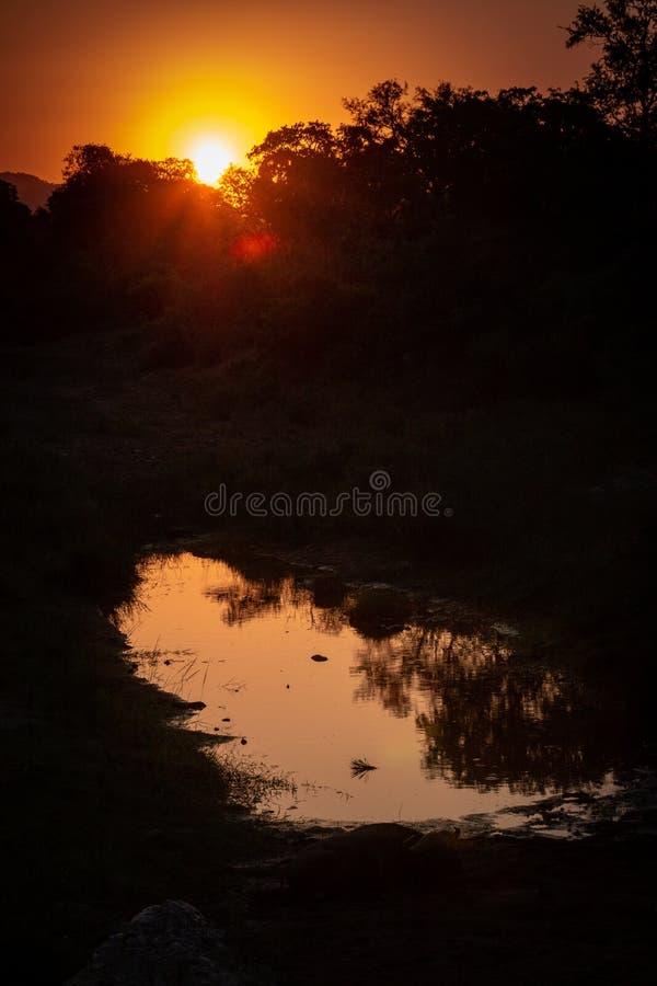 Coucher du soleil africain sur l'eau image libre de droits
