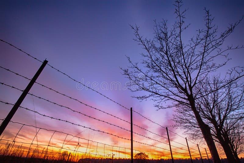 Coucher du soleil ardent vu par la barrière barbelée image stock