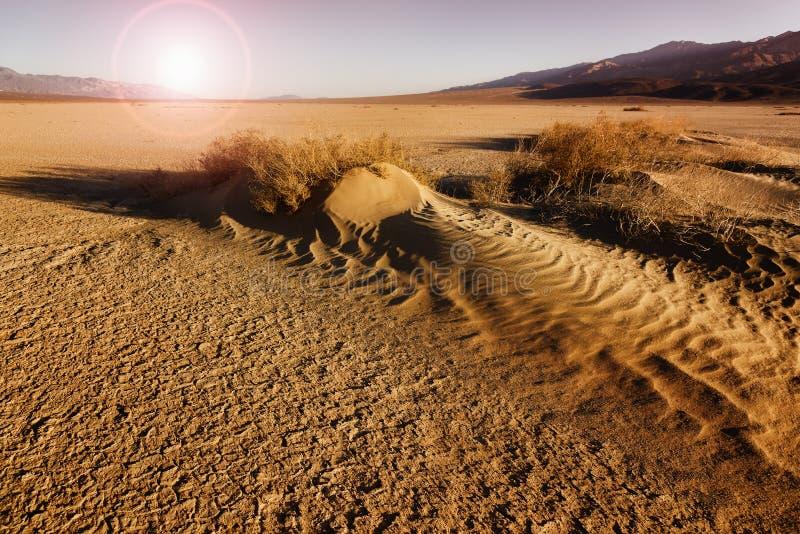 Coucher du soleil aride de désert de sable sur Death Valley, Etats-Unis photos libres de droits
