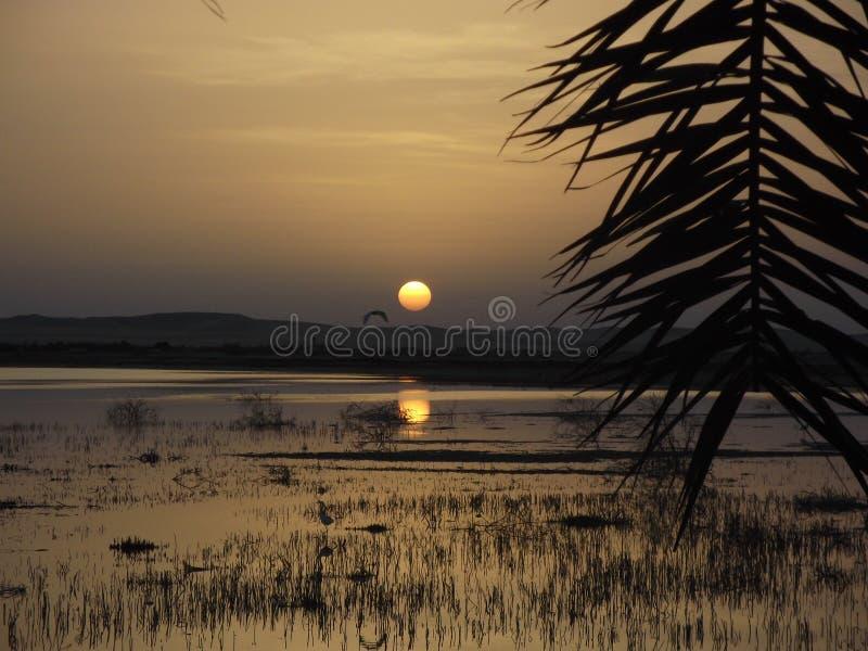 Coucher du soleil au-dessus d'oasis de Siwa image libre de droits