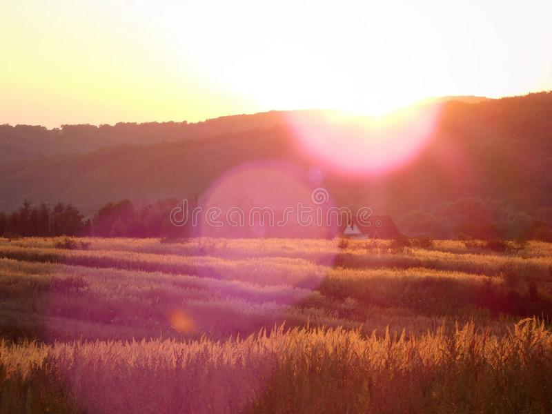 Coucher du soleil au-dessus d'un champ photos stock