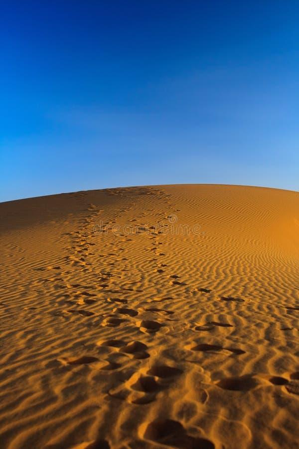 Coucher du soleil au-dessus de dune de sable photo libre de droits