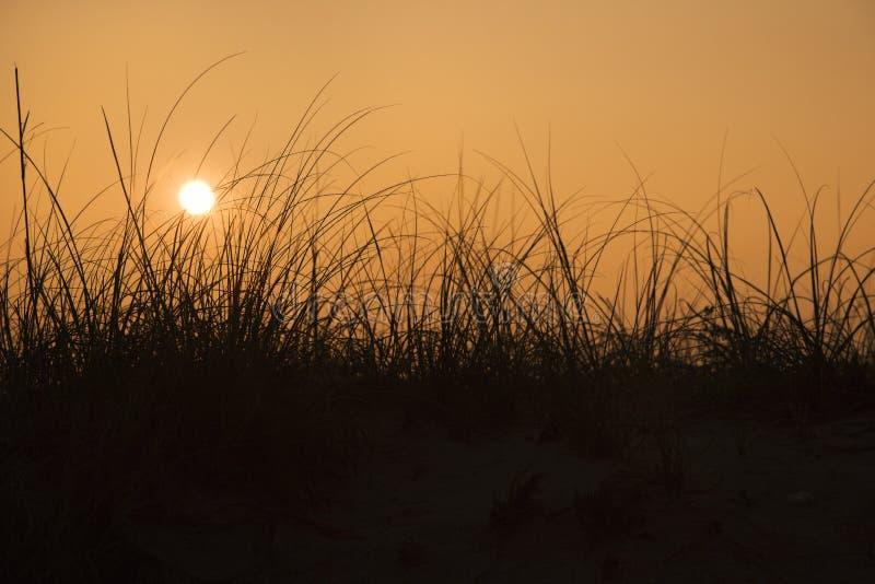 Coucher du soleil au-dessus de dune de sable image stock