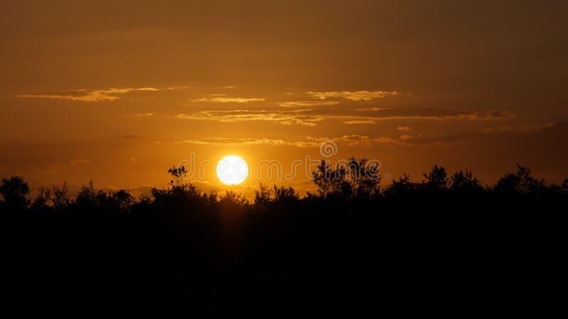 Coucher du soleil au-dessus de la grande réservation Tanzanie de jeu de Selous images libres de droits