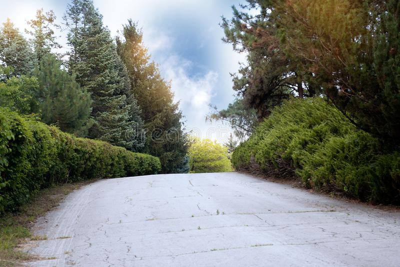 Coucher du soleil au-dessus de la route Lever de soleil en beau parc d'?t? Jour ensoleill? lumineux en parc Les rayons du soleil  photos stock