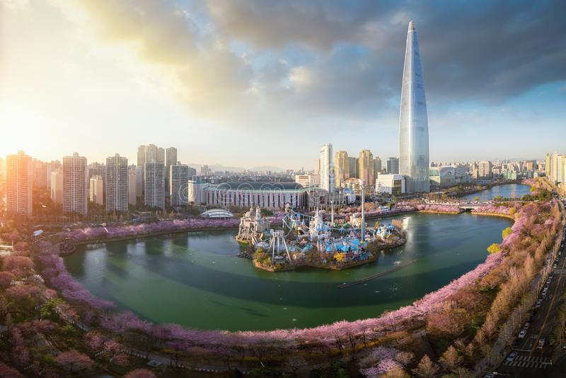 Coucher du soleil au-dessus de parc de fleurs de cerisier et fond de tour dans la ville de Séoul images libres de droits