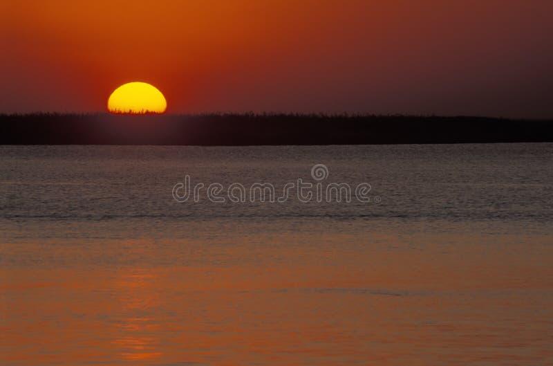 Coucher du soleil au-dessus de rivière Chobe, Botswana photos stock