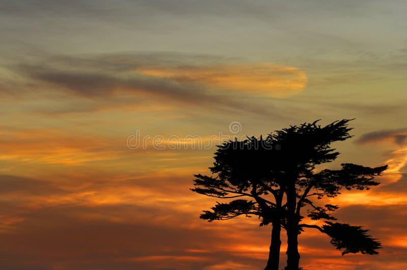 Coucher du soleil au-dessus de Santa Cruz photos libres de droits