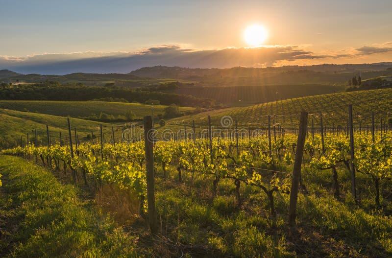 Coucher du soleil au-dessus des collines de la Toscane, Italie photo libre de droits