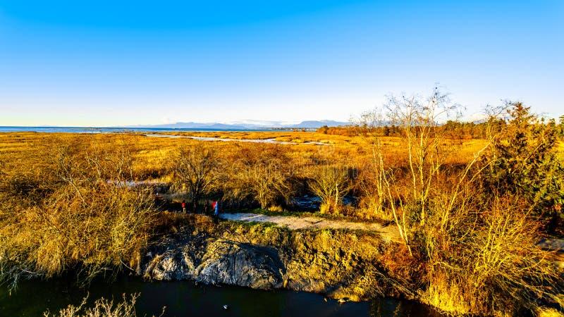 Coucher du soleil au-dessus des marécages de la réserve d'oiseaux de Reifel près de Ladner, AVANT JÉSUS CHRIST, le Canada photographie stock libre de droits