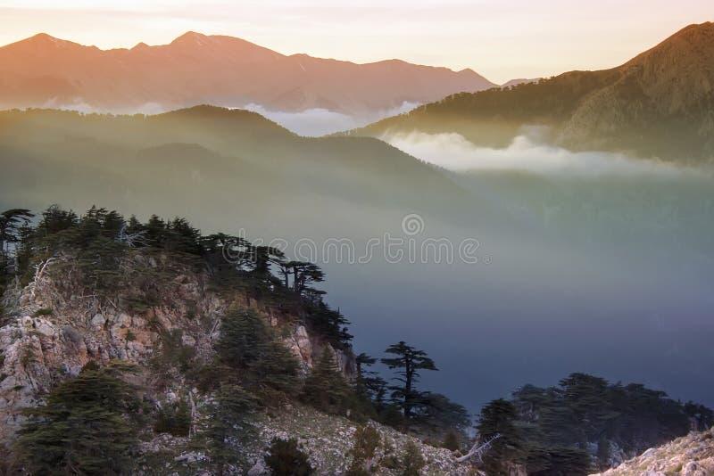 Coucher du soleil au-dessus des montagnes image stock