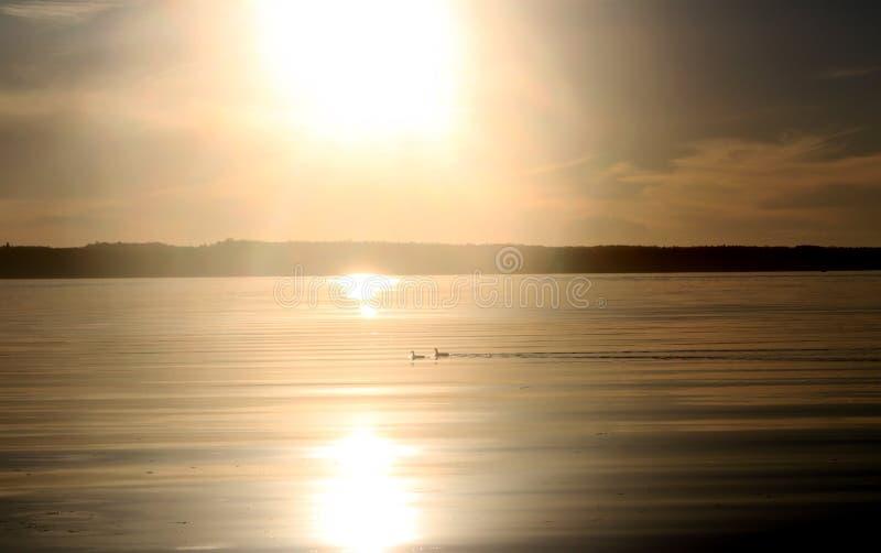 Coucher du soleil au-dessus du lac photo libre de droits