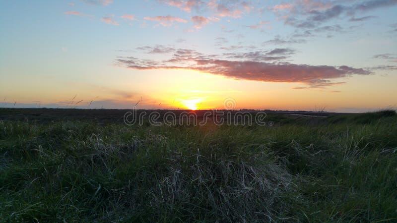 Coucher du soleil au-dessus du marais 2 images libres de droits