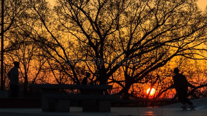 Coucher du soleil au parc de patin photo libre de droits